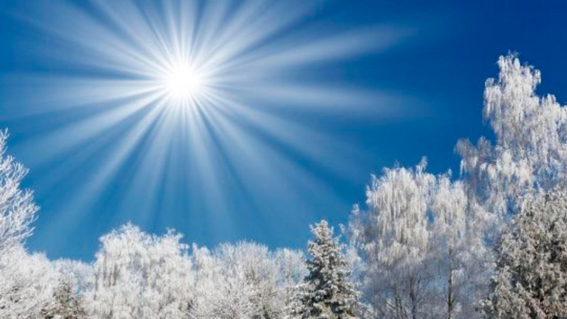 Clase en línea de Solsticio de diciembre: Girando la Rueda del Tiempo